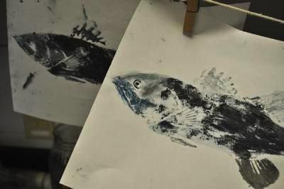 trout prints