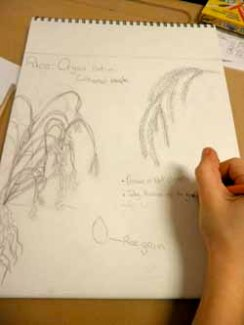 Student work in sketchbook