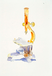Student Microscope, 1810, watercolor on Yupo, 16 x 14 inches