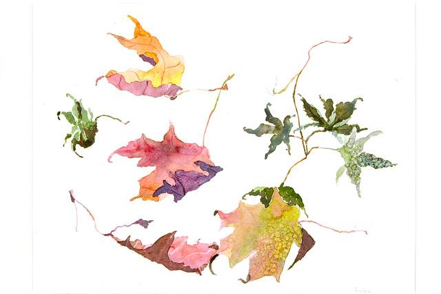 Fierston watercolor